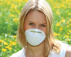 травы от аллергии на пыль