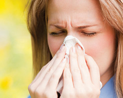 Поллиноз и аллергические реакции на